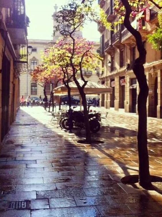 One day in Barcelona - born